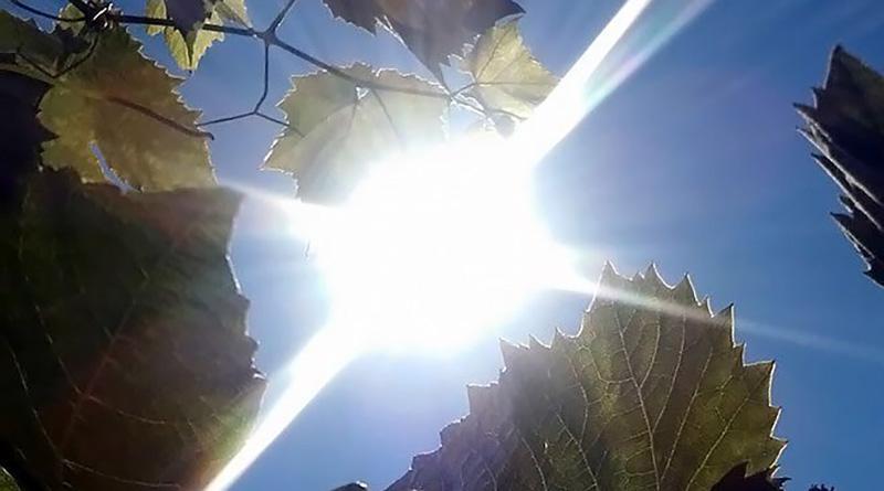 Photo of Sunčano i ugodno toplo