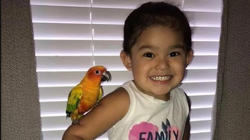 Photo of Djevojčica istrenirala svoju pticu da napada sve one koji joj se ne dopadaju
