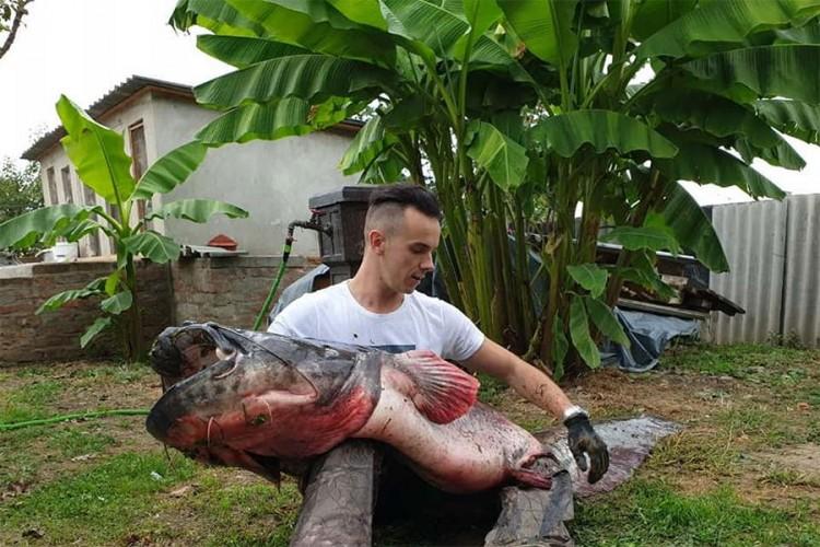 Photo of Ulovio soma teškog 103 kilograma