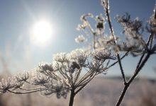 Photo of Vrijeme: Sutra sunčano, temperatura do 12 stepeni Celzijusovih