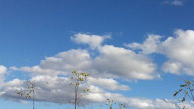 Photo of Vrijeme: Danas pretežno oblačno, krajem dana padavine