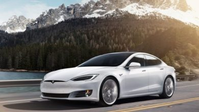 Photo of Tesla Model S protiv konja – ko je brži? (VIDEO)