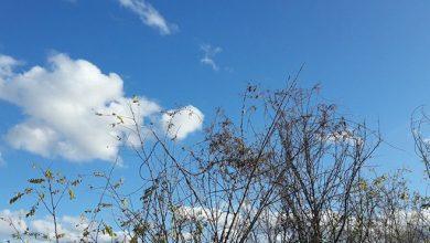 Photo of Sutra promjenjivo oblačno, na sjeveru toplije