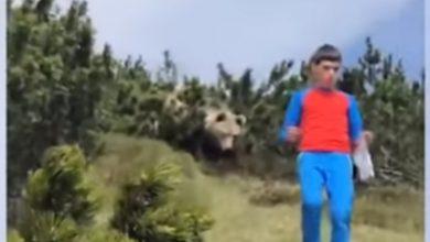 Photo of Kako preživjeti bliski susret sa medvjedom (VIDEO)