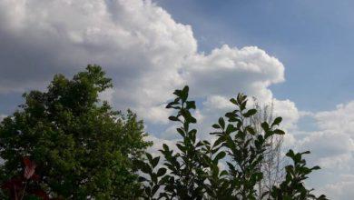 Photo of VRIJEME: Nestabilno uz kišu, grmljavinu, ali i sunčane intervale
