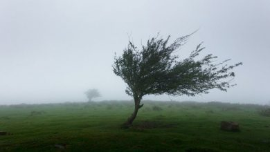 Photo of PUTEVI: Povremeni jači udari vjetra na području Banjaluke i Trebinja
