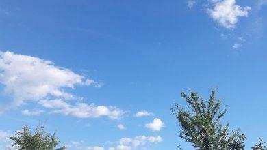 Photo of VREMENSKA PROGNOZA: Sutra kiša, a narednih dana sunlano i toplo