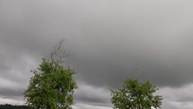 Photo of VRIJEME: Sutra kiša, obilnija na jugu