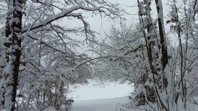 Photo of VRIJEME: Danas umjereno oblačno i hladno