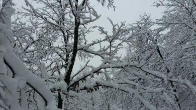Photo of VRIJEME: I sutra leden dan sa sjevernim vjetrom