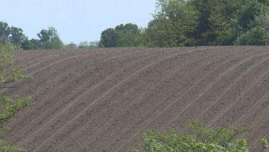Photo of AGROMETEOROLOGIJA: Sedmica povoljna za poljoprivredne radove na otvorenom