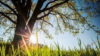 Photo of VRIJEME: Sunčano i toplo za ovo doba godine