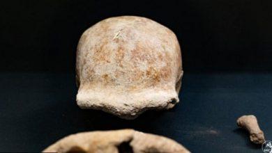 Photo of Arheolozi otkrili ostatke devet neandertalaca u pećini nedaleko od Rima
