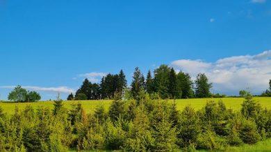 Photo of VRIJEME: Danas sunčano i vruće